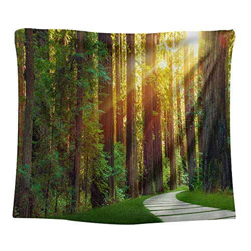 Forest Sunset Scenery Tapestry Wall Hanging Wall Decoration Home Decoration Beach Towel Background Cloth,L/150x200cm(59'x79'),Qgsj024