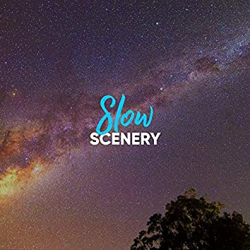 # 1 Album: Slow Scenery