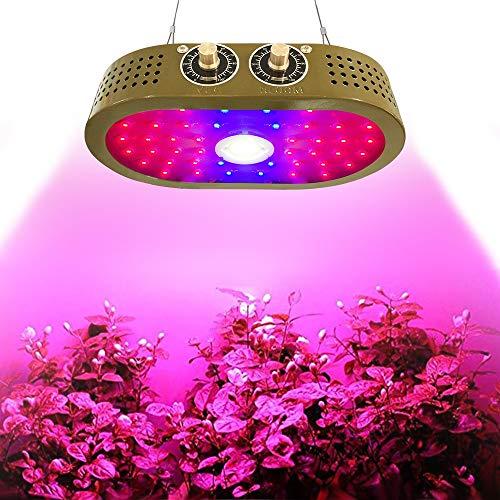 Gekleurde plafondlamp COB Grow Light 1100W Indoor voor planten en vegetale planten, veel gebruikt voor tenten, broeikas en tuin