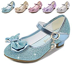 Blue/Ms Heels Mary Jane Princess Flower Girl Shoes