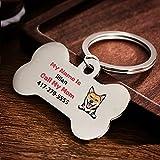 Placas para Perros con Nombre Telefono Personalizado Chapa Identificativa Grabada para Perro Etiquetas de identificación de Mascotas de Acero Inoxidable