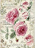 STAMPERIA INTERNATIONAL, KFT PAPEL ARROZ ROSA A4, Botanic English Roses, Talla única