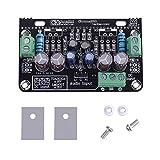 TDA2030A Placa amplificadora, amplificador de potencia estéreo de doble canal 2.0, módulo de amplificador de audio estéreo para altavoces de audio DIY