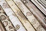 B & P Italia surtido de 10hojas 70x 100cm para paquetes de regalo, Color Platino/Champagne, Papel de alta calidad de polipropileno