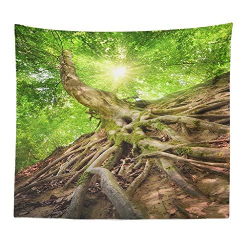 Xmiral Tapisserie Natürlich Wald Landschaft Yogamatte Picknickdecke Wandteppich Wanddeko 150X200cm(P)
