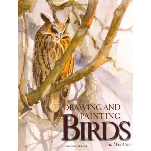 Drawing And Painting Birds Tim Wootton 9781847972248