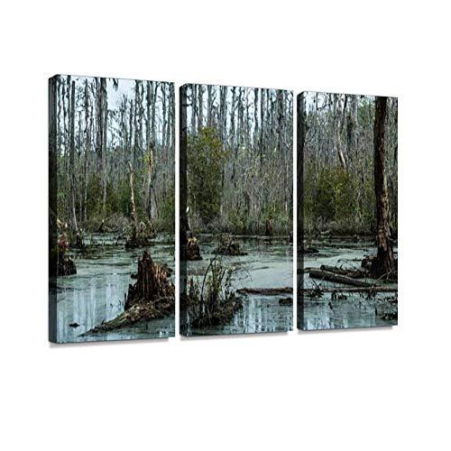 HABEN ARTWORK Sumpf in South Carolina Zypressenbaum, Sumpf, Druck auf Leinwand, Wandkunstwerk, moderne Fotografie, Heimdekoration, einzigartiges Muster, gespannt und gerahmt,...
