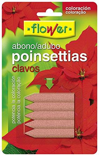 Flower 10839–Compost Nails Poinsettias Blister 5U, 5