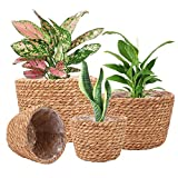 Seagrass Planter Basket Stylish Planter Baskets for Indoor and Outdoor Plants Perfect for Flower Pots Cover and Room Decoration, Set of 4