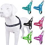 Reflective personalizar arnés para perro con nombre bordado de nombre, número de teléfono, personalizado id arnes facil control con bloqueo de seguridad para perros
