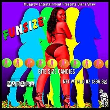 Fun$ize The Remixes