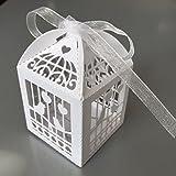 Tophobby 10pájaro Bauer Filigree Boxes–Pearl White