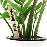 KINGLAKE 100 Stücke 15 cm Popsicle Sticks Holzstäbchen Natürliche Craft Sticks Pflanze Etikette Hölzern für Handwerk Hausgemachte DIY Dessert Machen Pflanzen Marker - 5