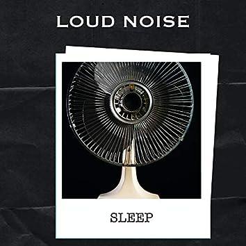 Loud Noise Sleep