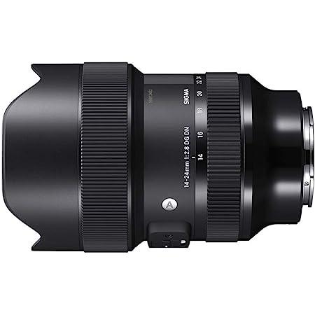 Sigma 213965 14-24mm F2.8 DG DN Art for Sony E Mount, Black