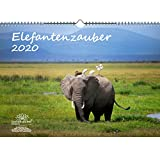 Elefantenzauber - Calendario 2020, DIN A3, diseño de elefantes
