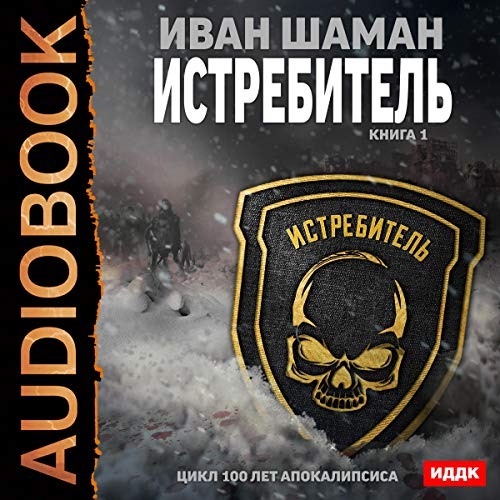 100 Years of the Apocalypse. Fighter I (Russian Edition) audiobook cover art