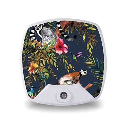 Lámpara de noche LED con sensor inteligente sensor de atardecer a amanecer, selva tropical, limón, catta, colibrí, luz blanca cálida, para escaleras, pasillo, cocina, dormitorio