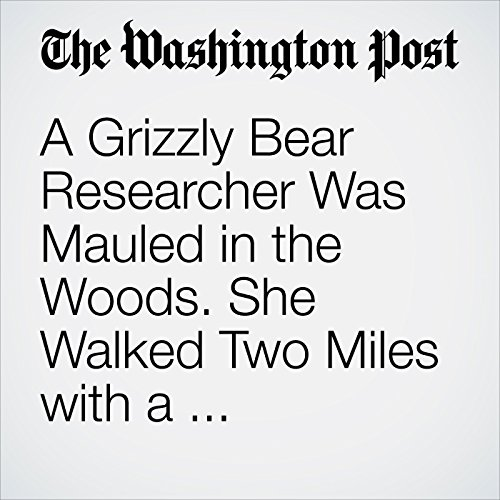 A Grizzly Bear Researcher Was Mauled in the Woods. She Walked Two Miles with a Fractured Skull for Help copertina