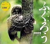 2009ふくろう (Yama-Kei Calendar)