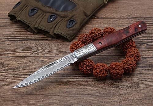 FARDEER Knife Cuchillo de Caza Plegable al Aire Libre