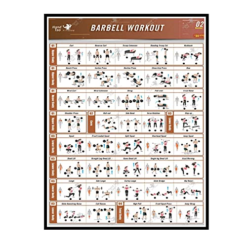 ZYHD Barbell Workout Exercise Poster Bodybuilding Guide Fitness Gym Chart Art Wall Canvas Poster Print Living Room Home Decor -50X70cm No Frame