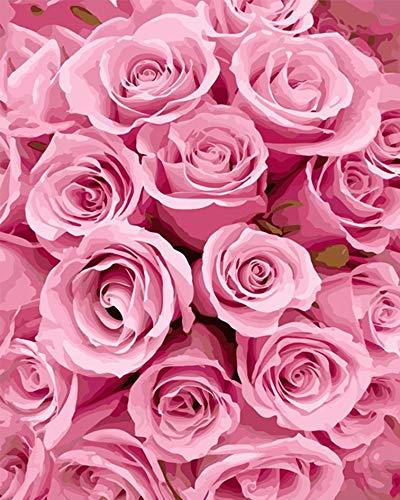 Pintar por números para niños adultos kit de pintura al óleo DIY Principiante - Rosas rosas 334