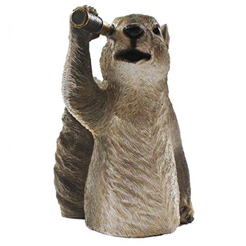 CAGO Tiere mit Fernglas oder Fotoapperat 4-Fach Sortiert Polyresin wetterfest Deko, Variante:Eichhörnchen mit Fernrohr
