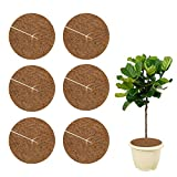 Halcyerdu 6 Pezzi Disco di Cocco 20 cm, Pacciamatura Cocco, Fibra di Cocco, Protezione Invernale per Piante in Vaso
