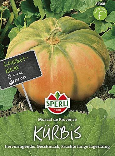 Kürbissamen - Kürbis Muscade de Provence von Sperli-Samen