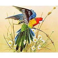 DIY5Dダイヤモンドアートフルドリルドローイング絵画カラフルな鳥クリスタルラインストーン刺繡クロスステッチアートクラフトサプライキャンバスホームキッチン壁飾り16.8 * 11.8インチ