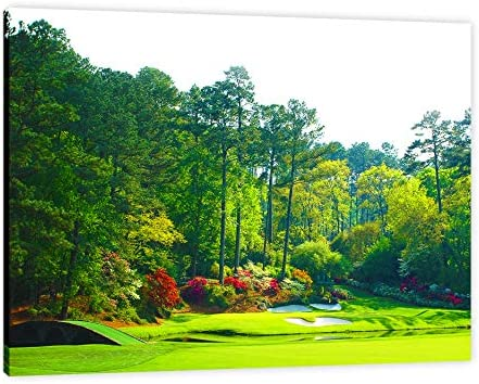 Augusta Golf Course FRAMED Canvas Print Home Decor Wall Art Gallery Wrap Inner Frame 24x30 product image