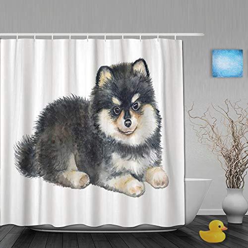 AYISTELU Duschvorhang,Doggy Pomeranian Spitz Puppy White Pedigree Dog,Stoff Badezimmer Dekor Set mit Kunststoffhaken, enthalten - 180x210cm