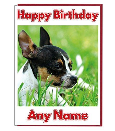 AK Giftshop Gepersonaliseerde Verjaardagskaart - Ontspannende Chihuahua Hond - ADD A NAME AND AGE
