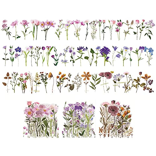Retro Floral Scrapbook Planta Scrapbook Pegatinas Plantas Pegatinas Transparentes Flores Vintage Diferentes Flores Pegatina Vintage Conjunto De Pegatinas Para Scrapbook