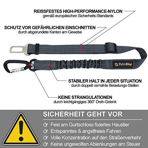 Hunde-Anschnall-Gurt inkl. extra gesichertem Profi-System-Karabiner | - 4