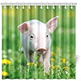K.e.n Bad Vorhang junges Schwein auf Frühling grünes Gras Polyester Stoff wasserdicht Duschvorhang für Badezimmer