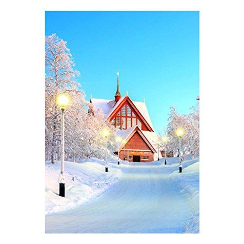 Diamant Peinture, Nelnissa Snow House 5d bricolage Diamant Peinture mosaïque à broder kit de point de croix Décor