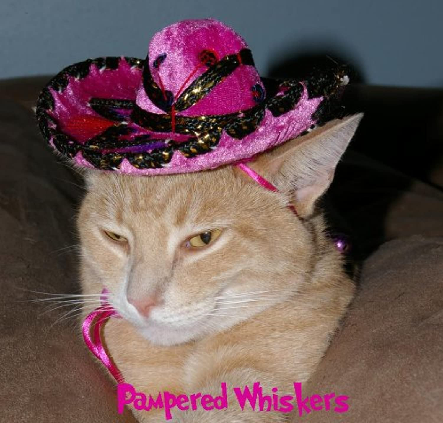 Fiesta Fuchsia Miniature Sombrero hat for Cats and Dogs