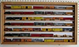 N/Z Scale Model Train Display Case Wall Shadow Box Cabinet (Oak Finish)