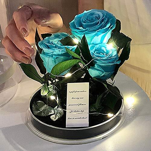 Caja de regalo de jardín de rosa roja con diseño de rosa eterna transparente para padres de San Valentín o cumpleaños