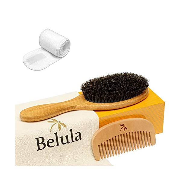 Beauty Shopping 100% Boar Bristle Hair Brush Set. Soft Natural Bristles for Thin and Fine Hair. Restore