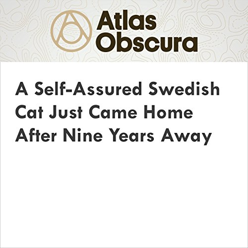 A Self-Assured Swedish Cat Just Came Home After Nine Years Away audiobook cover art