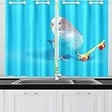 Zemivs Parrot Play Skateboard Cortinas de Cocina Cortinas de Ventana Niveles para café Baño Lavandería Sala de Estar Dormitorio 26x39 Pulgadas 2 Piezas