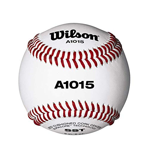 Wilson Béisbol de la Escuela Secundaria (12)