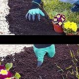 Immagine 2 guanti da giardinaggio artigli verde