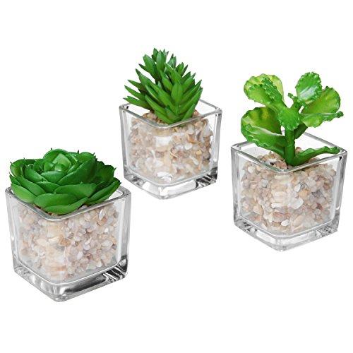 MyGift Moderno in Vetro Trasparente Planter Pot Piante finte/Mini Artificiale in Vaso Piante grasse, Set di 3