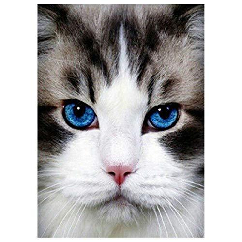 fine_fine Animal Diamond Painting Full Drill, DIY 5D Rhinestone Diamond Painting Kits, Cute Cat Cross Stitch Pattern Picture Arts Craft Supply Home Wall Decor (B)