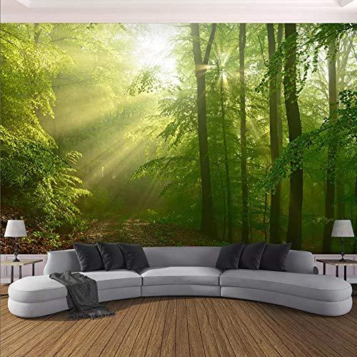 Papel Tapiz 3D Moderno Bosque Verde Sol Paisaje Foto Murales De Pared Sala De Estar Tv Sofá Fondo Decoración De Pared Fondos De Pantalla,300(W)*210(H)Cm