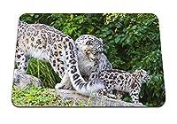 26cmx21cm マウスパッド (ユキヒョウの小さな家族) パターンカスタムの マウスパッド